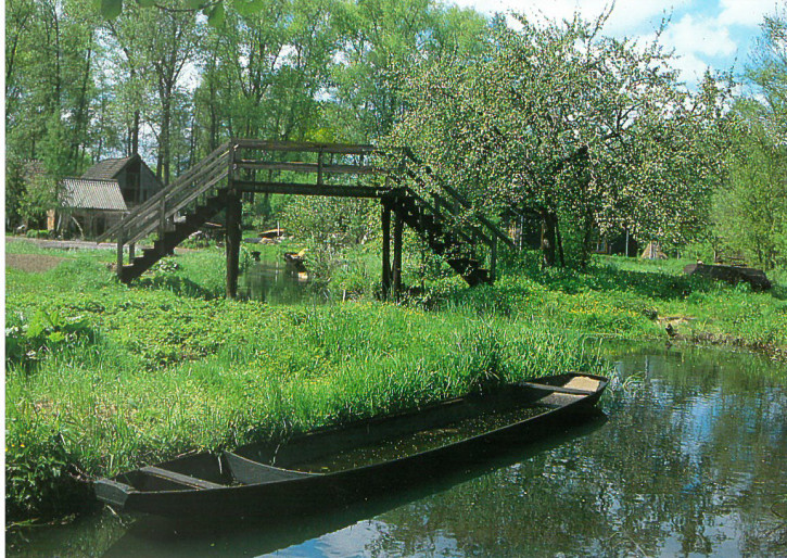 Błóčanska krajina pola Lehde